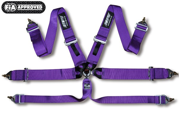 6p_harness_purple